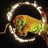 Цирки в Кедровке